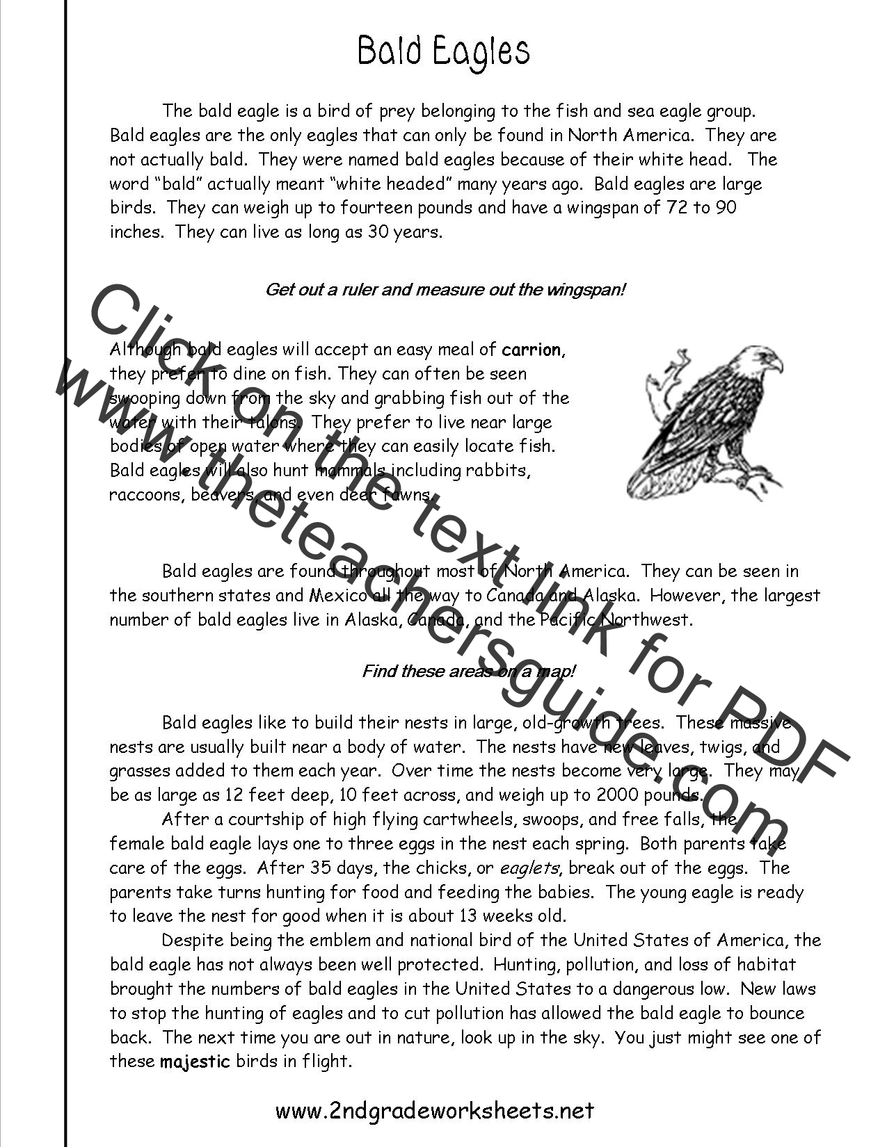Printables Reading Informational Text Worksheets reading informational text worksheets bald eagles