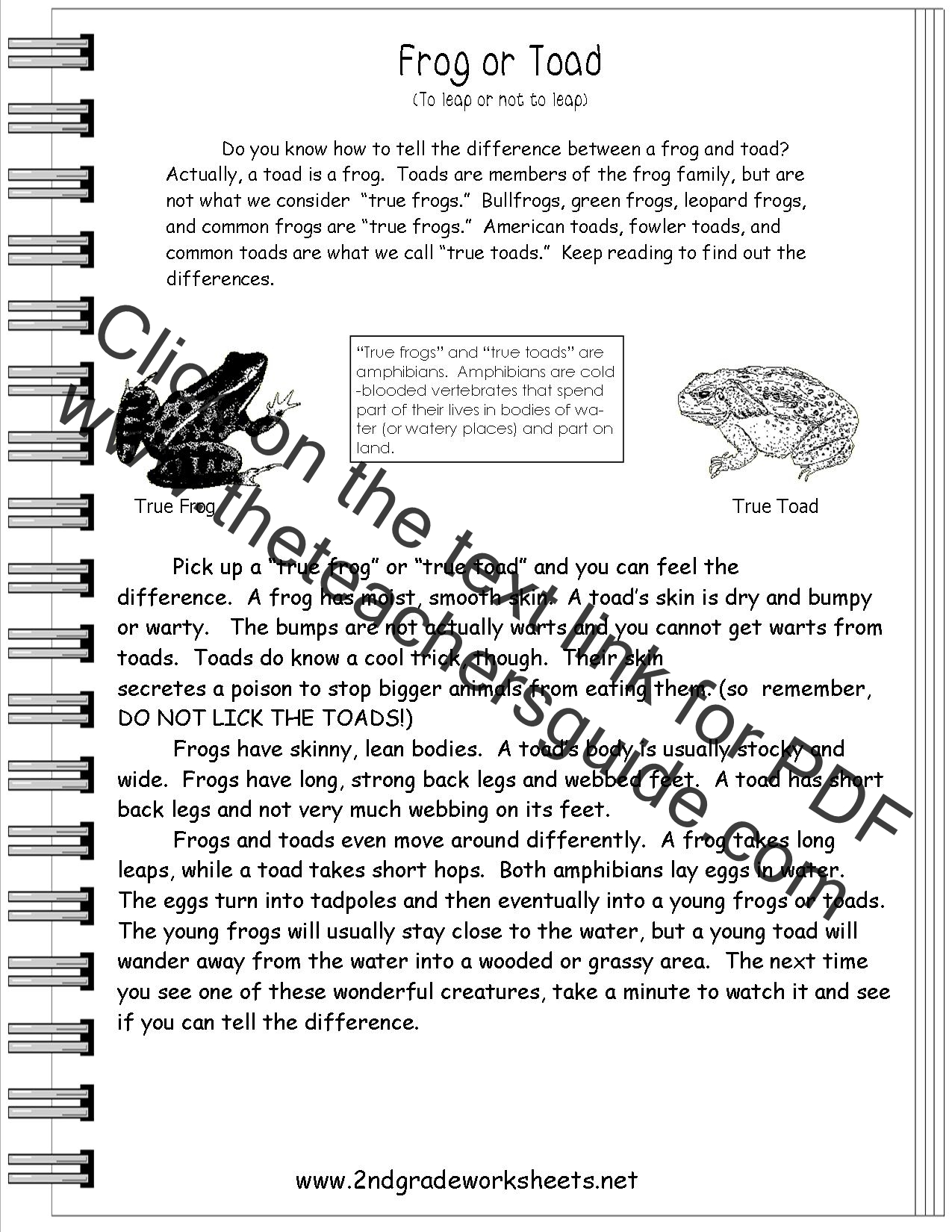 Worksheets Second Grade Science Worksheets informational text worksheets frog or toad worksheet